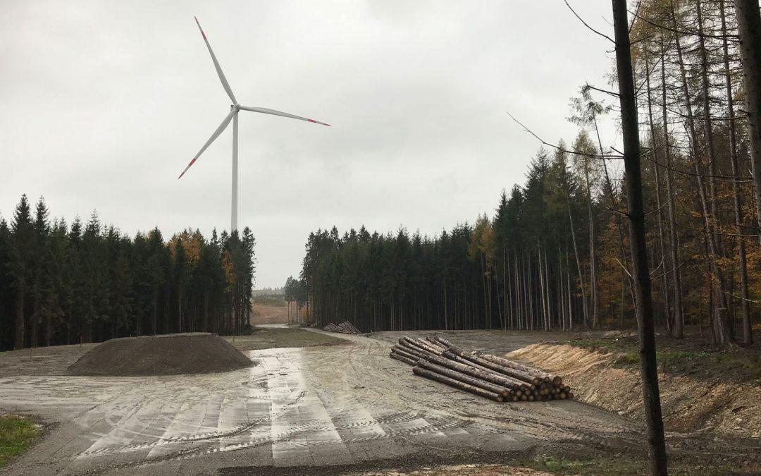 Waldrodung für die Windkraft – wo sind die Aktivisten vom Hambacher Forst?